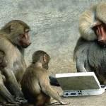 猿でも勝てるランダムウォーク理論